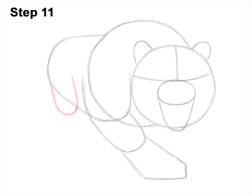 How to Draw a Mean Tiger Roaring Growling Stalking 11
