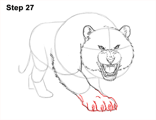 How to Draw a Mean Tiger Roaring Growling Stalking 27