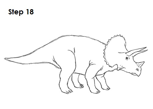 Draw Triceratops 18