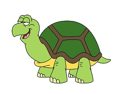 How to Draw a Cartoon Turtle Tortoise