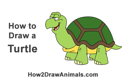 How to Draw Funny Goofy Cartoon Turtle Tortoise