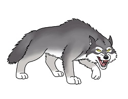 How to draw an cartoon Wolf Growling