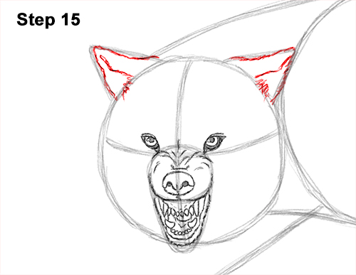 Draw Wolf Snarling 15