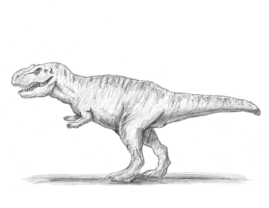 How to Draw a Tyrannosaurus Rex (T. rex)