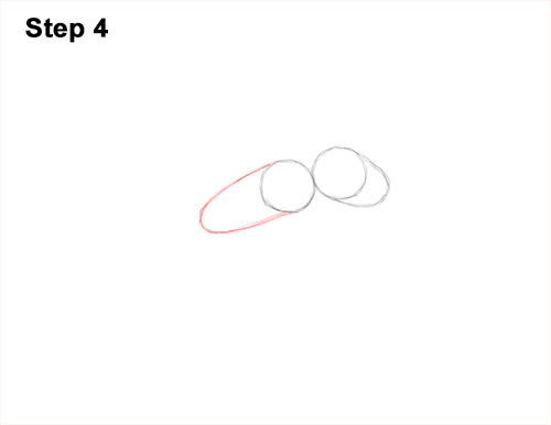 How to Draw Carpenter Pavement House Ant Insect Bug 4
