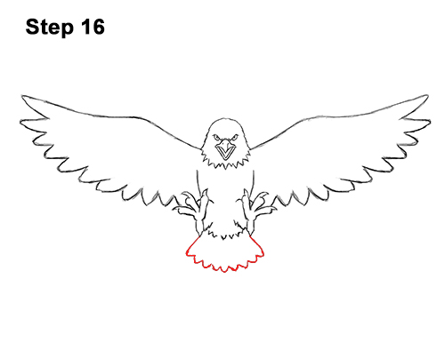 How to Draw Angry Cartoon Bald Eagle Flying Wings Talons 16