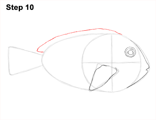 Draw Regal Blue Tang Fish 10