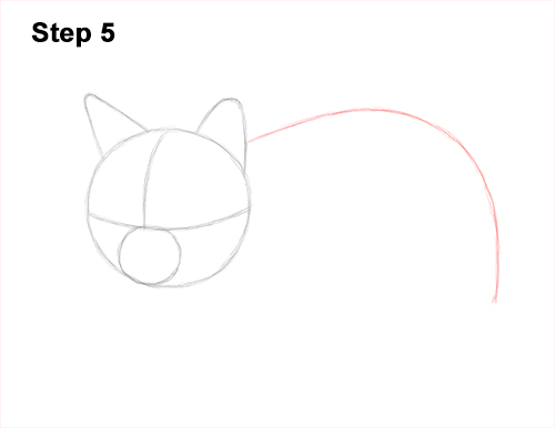 How to Draw a Tabby Kitty Cat Sitting Laying Roosting 5