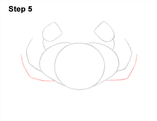 How to Draw a Brown Edible Red Crab 5