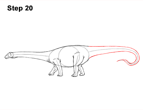 How to Draw Dinosaur Diplodocus Sauropod 20
