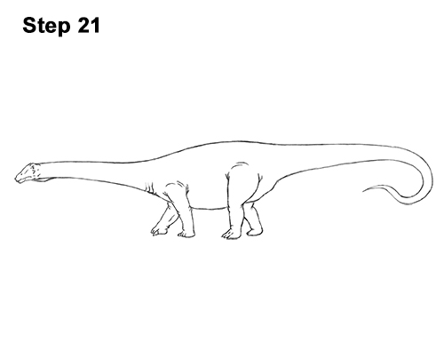 How to Draw Dinosaur Diplodocus Sauropod 21