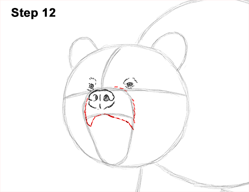 Draw a Growling Grizzly Bear Walking 12