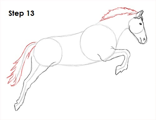 Draw a Horse Jumping 13