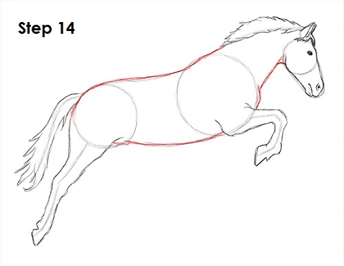 Draw a Horse Jumping 14