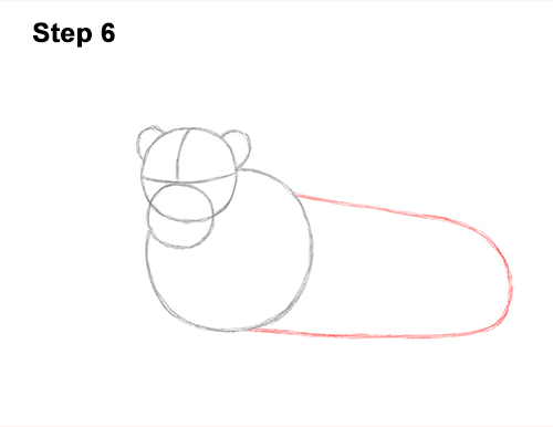 How to Draw a Lion Color Side Laying Lying Down 6