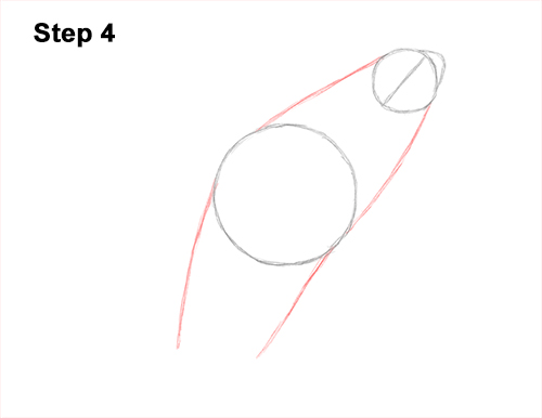 How to Draw a Killer Whale Orca Breaching Jumping 4