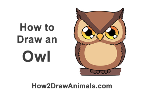 How to Draw Little Baby Small Cute Cartoon Owl Chibi Manga