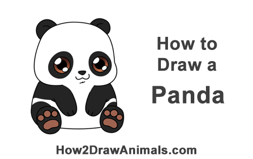 How To Draw A Panda Bear Cartoon Video Step By Step Pictures