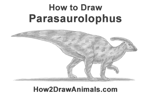 How to Draw a Parasaurolophus Dinosaur