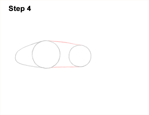 How to Draw a Royal Gramma Fairy Basslet Fish 4