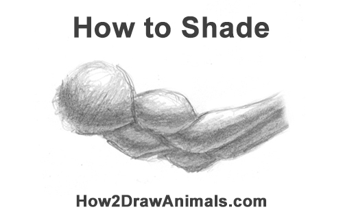 How to Shade Easy Simple Beginner Basic Art Fundamental