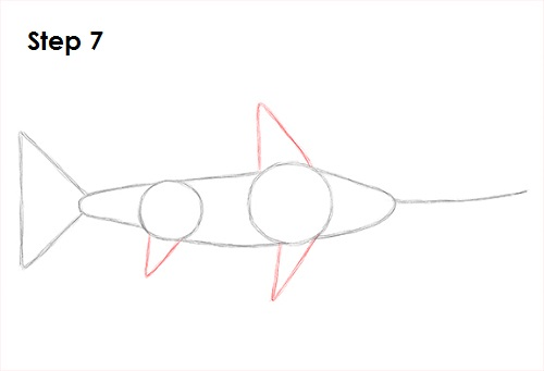 Draw Swordfish 7