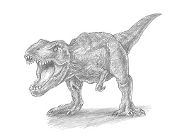 How to Draw a Tyrannosaurus Rex
