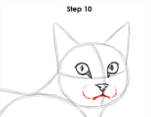 Draw Tabby Cat 10
