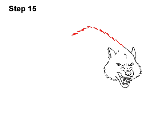 Draw Angry Mean Snarling Cartoon Wolf 15